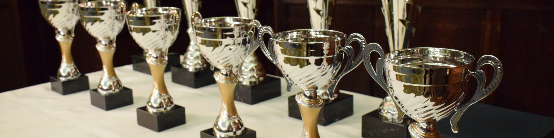 Sports awards trophies