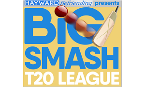 Hayward Big Smash